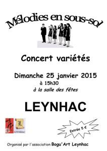 Affiche bogu'art concert 2015